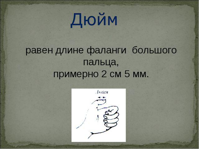 равен длине фаланги большого пальца, примерно 2 см 5 мм.