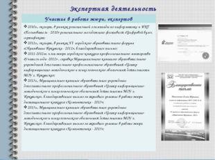 Экспертная деятельность Участие в работе жюри, экспертов 2010г., эксперт, в р