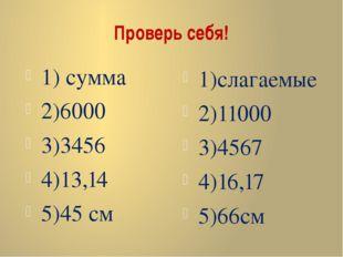Проверь себя! 1) сумма 2)6000 3)3456 4)13,14 5)45 см 1)слагаемые 2)11000 3)45