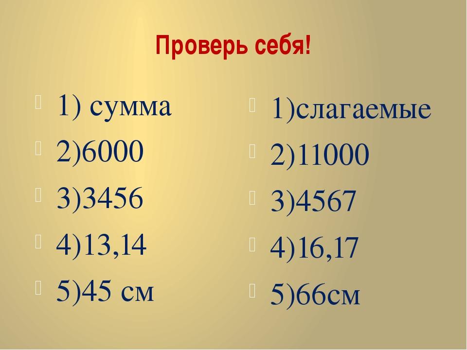 Проверь себя! 1) сумма 2)6000 3)3456 4)13,14 5)45 см 1)слагаемые 2)11000 3)45...
