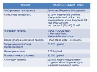 Конкурс Проекты «Бюджет - 2013» ФИО руководителя проекта Денисова ЛюдмилаЕлиф