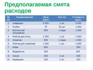 Предполагаемая смета расходов №п/п Наименование Цена (руб.) Кол-во Стоимость
