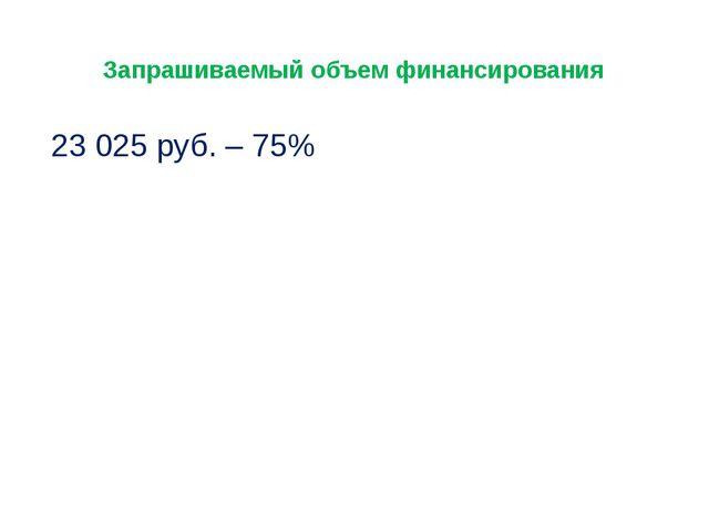 Запрашиваемый объем финансирования 23 025 руб. – 75%