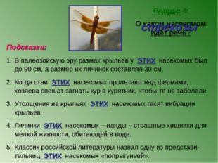 Вопрос 4: О каком насекомом идет речь? Ответ: стрекозы Подсказки: В палеозойс