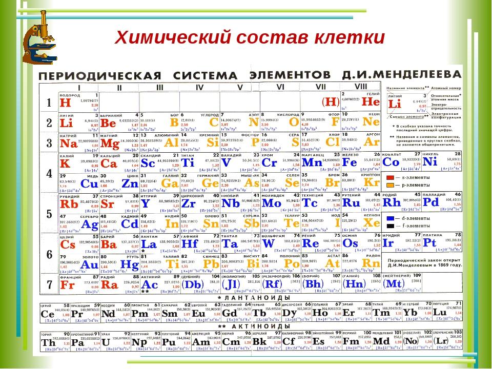 Химический состав клетки