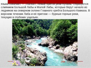 Лаба́— река на Северном Кавказе, в переводе с абазинского языка означает— «