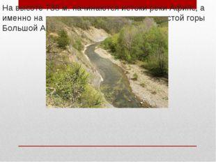 На высоте 738 м. начинаются истоки реки Афипс, а именно на северо-восточном с