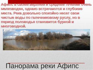 Панорама реки Афипс Афипс в своем верхнем и среднем течении очень мелководен,
