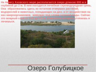 Озеро Голубицкое На берегу Азовского моря располагается озеро длиною 600 м и