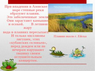 При впадении в Азовское море степные реки образуют плавни. Это заболоченные з