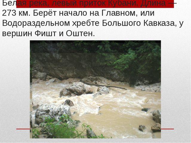 Белая река, левый приток Кубани. Длина— 273км. Берёт начало на Главном, или...