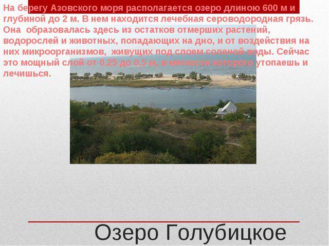 Озеро Голубицкое На берегу Азовского моря располагается озеро длиною 600 м и...