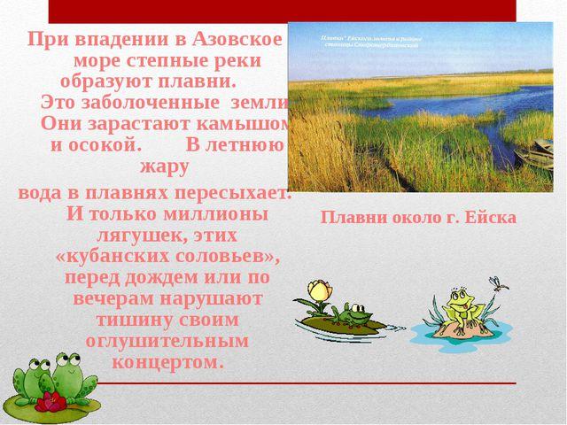 При впадении в Азовское море степные реки образуют плавни. Это заболоченные з...