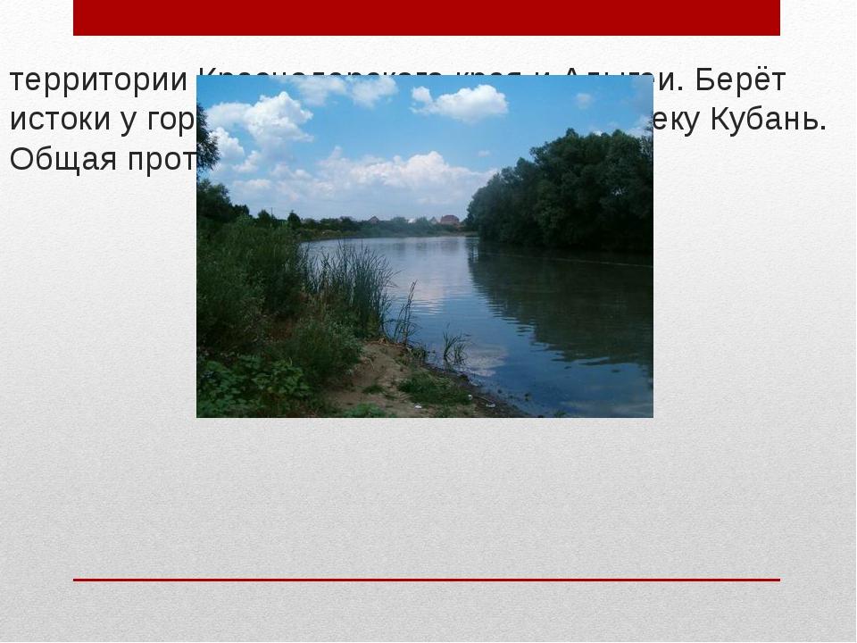 Афи́пс — река на Северном Кавказе. Протекает по территории Краснодарского кра...