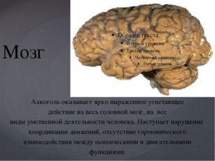 Мозг Алкоголь оказывает ярко выраженное угнетающее действие на весь головной