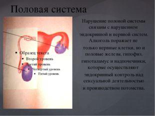 Половая система Нарушение половой системы связаны с нарушением эндокринной и