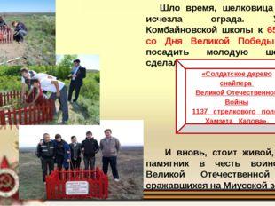 Шло время, шелковица погибла, исчезла ограда. Учащиеся Комбайновской школы к