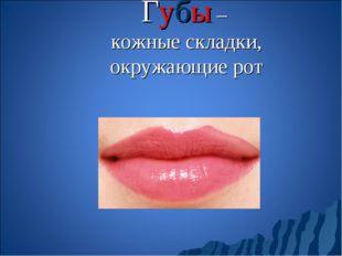 Губы – кожные складки, окружающие рот