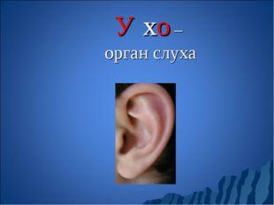 У́хо – орган слуха