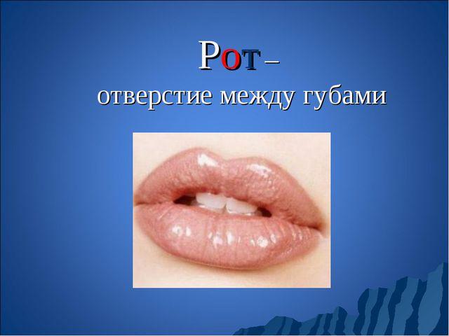 Рот – отверстие между губами