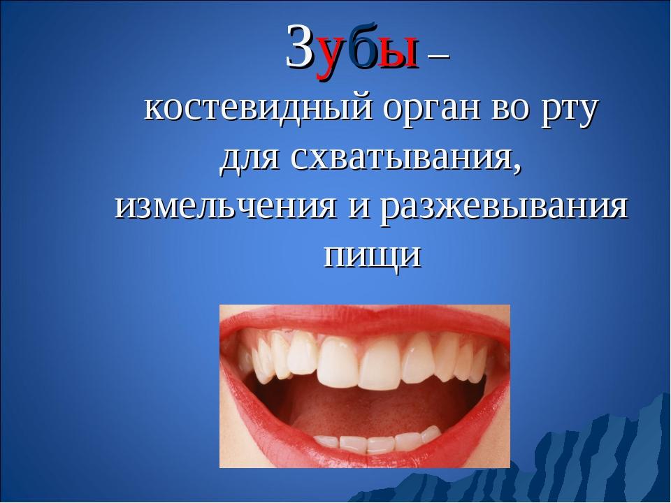Зубы – костевидный орган во рту для схватывания, измельчения и разжевывания п...