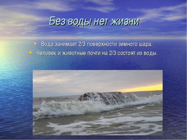Без воды нет жизни Вода занимает 2/3 поверхности земного шара. Человек и живо...