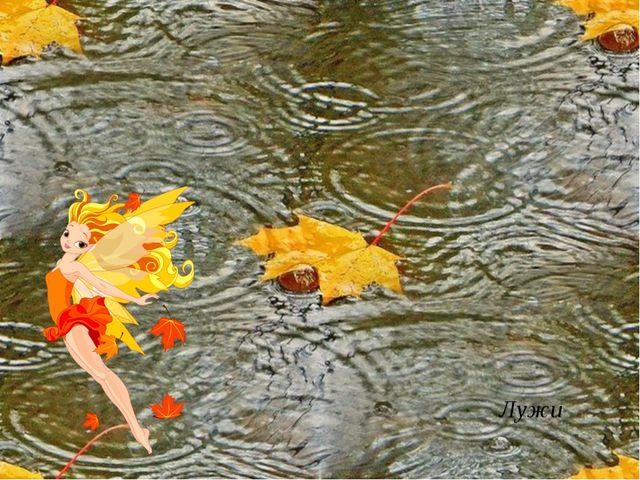 В сентябре и в октябре, Их так много во дворе! Дождь прошёл – оставил их, Сре...