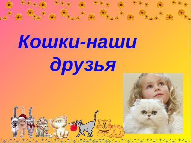 Кошки-наши друзья