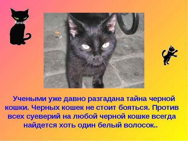 Учеными уже давно разгадана тайна черной кошки. Черных кошек не стоит боятьс...