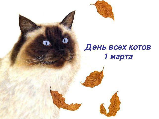 День всех котов 1 марта