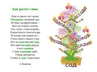 Как растут слова Как-то много лет назад Посадили странный сад. Не был сад фру