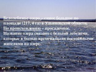 Белолебяжье озеро – самое большое по площади (217, 4 га) в Ульяновской област