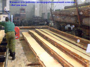 В нашем селе работает лесоперерабатывающий комплекс «Всё для леса»