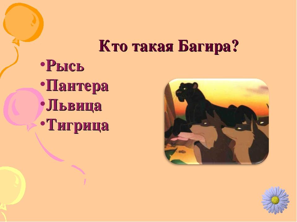Кто такая Багира? Рысь Пантера Львица Тигрица