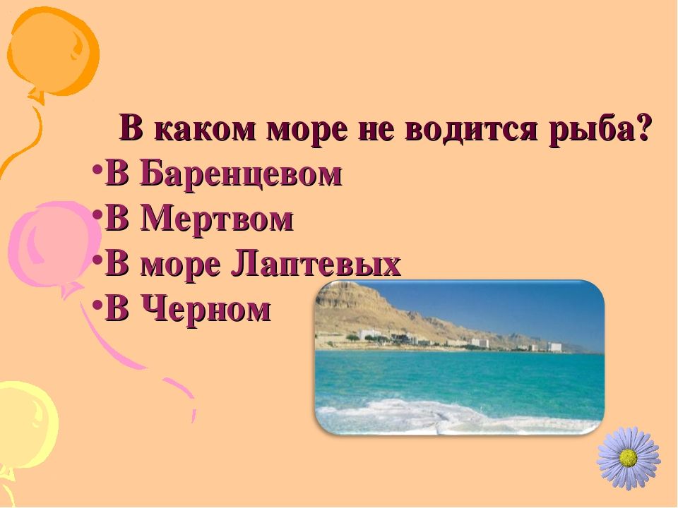 В каком море не водится рыба? В Баренцевом В Мертвом В море Лаптевых В Черном