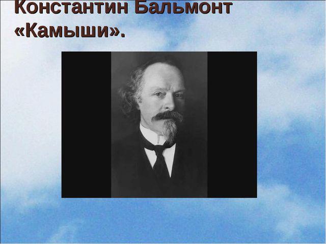 Константин Бальмонт «Камыши».