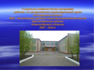 Социально-педагогическая программа работы по профилактике правонарушений сред