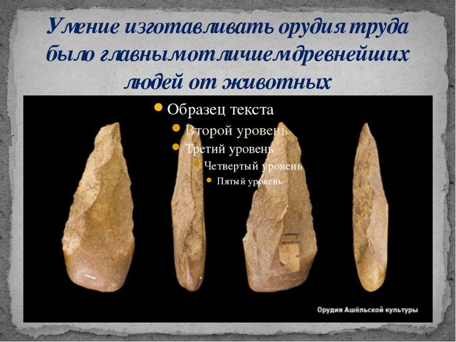Умение изготавливать орудия труда было главным отличием древнейших людей от ж...