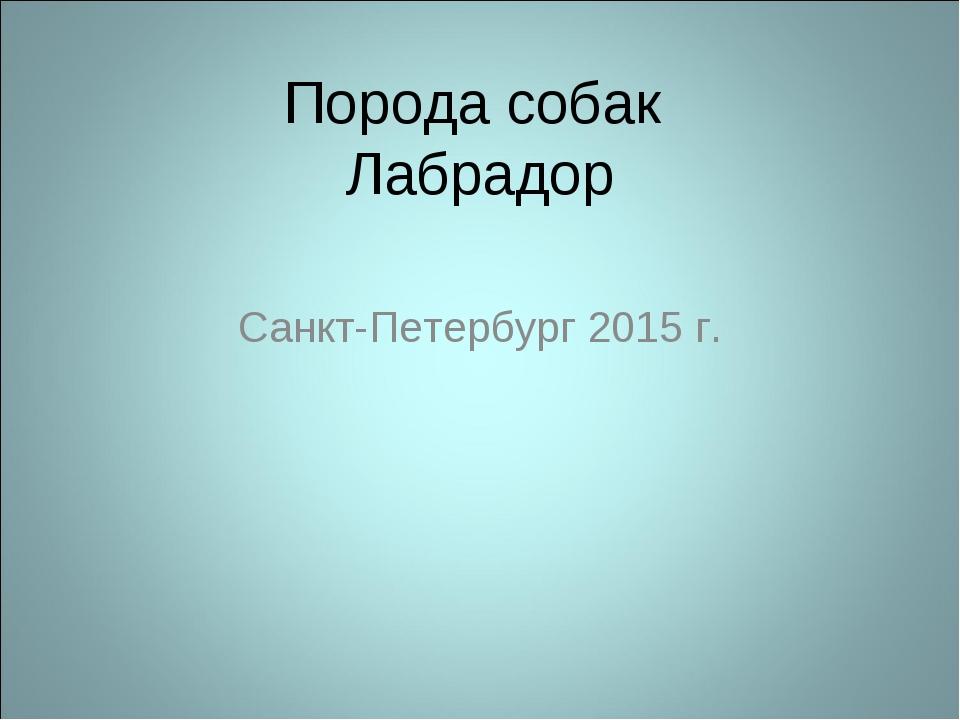Порода собак Лабрадор Санкт-Петербург 2015 г.