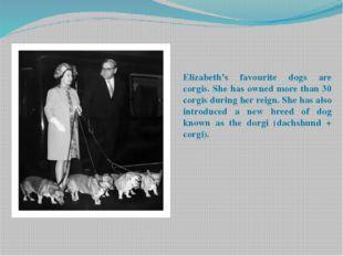 Elizabeth's favourite dogs are corgis. She has owned more than 30 corgis duri