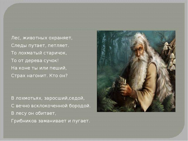Лес, животных охраняет, Следы путает, петляет. То лохматый старичок, То от д...