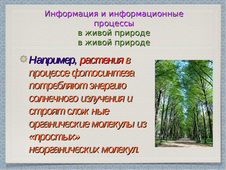 Информация и информационные процессы в живой природе Например, растения в про...