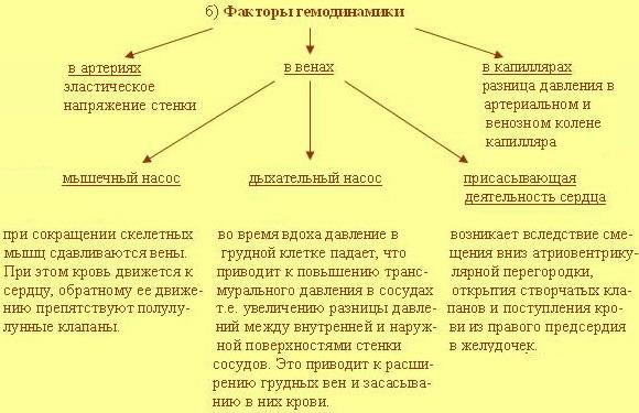 http://soasait.narod.ru/Site.files/Table2.jpg