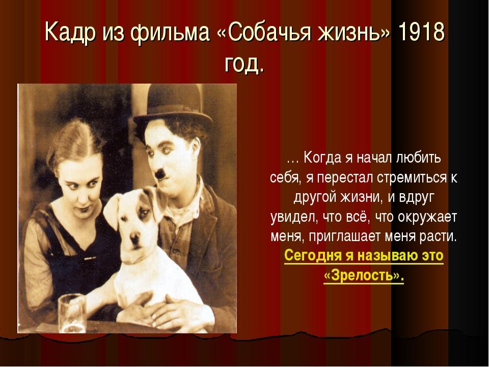 Кадр из фильма «Собачья жизнь» 1918 год. … Когда я начал любить себя, я перес...