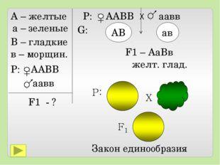 А – желтые а – зеленые В – гладкие в – морщин. P: ААВВ аавв F1 - ? Р: ААВВ Х
