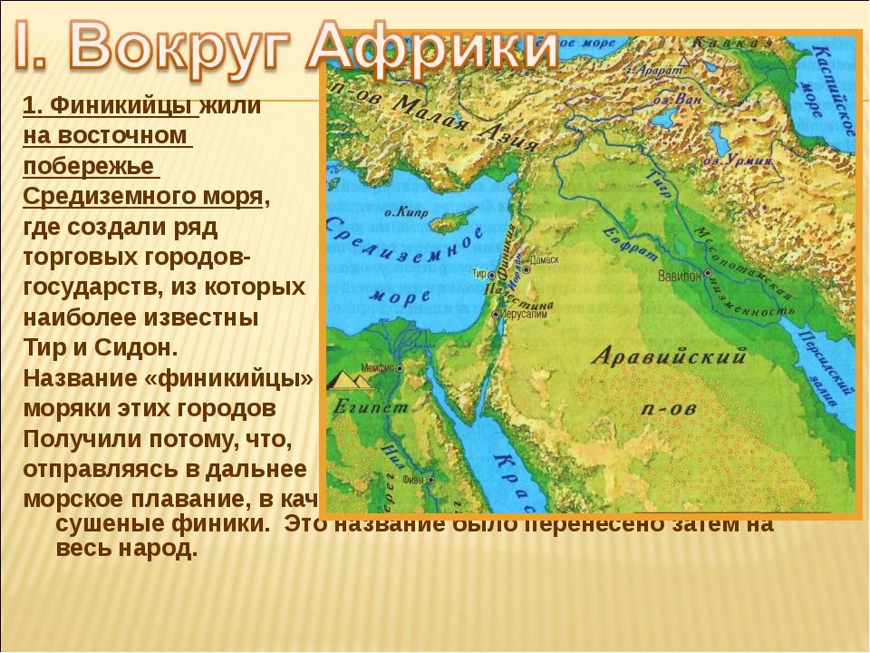 1. Финикийцы жили на восточном побережье Средиземного моря, где создали ряд т...