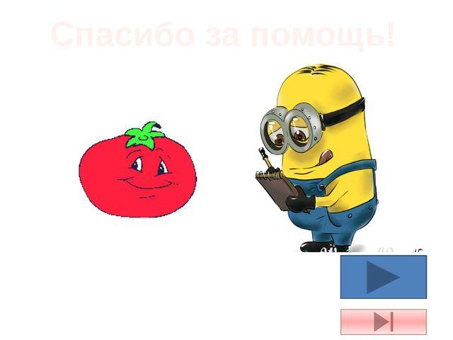 Камера Оптика Скамья магазин Лавка