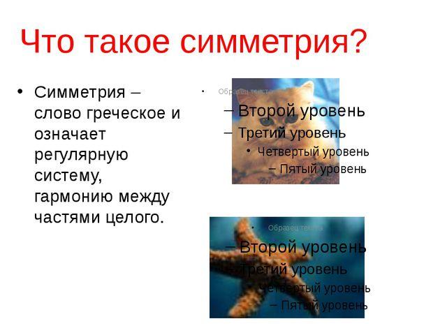 Что такое симметрия? Симметрия – слово греческое и означает регулярную систем...