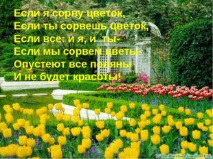 Если я сорву цветок, Если ты сорвешь цветок, Если все: и я, и ты- Если мы сор