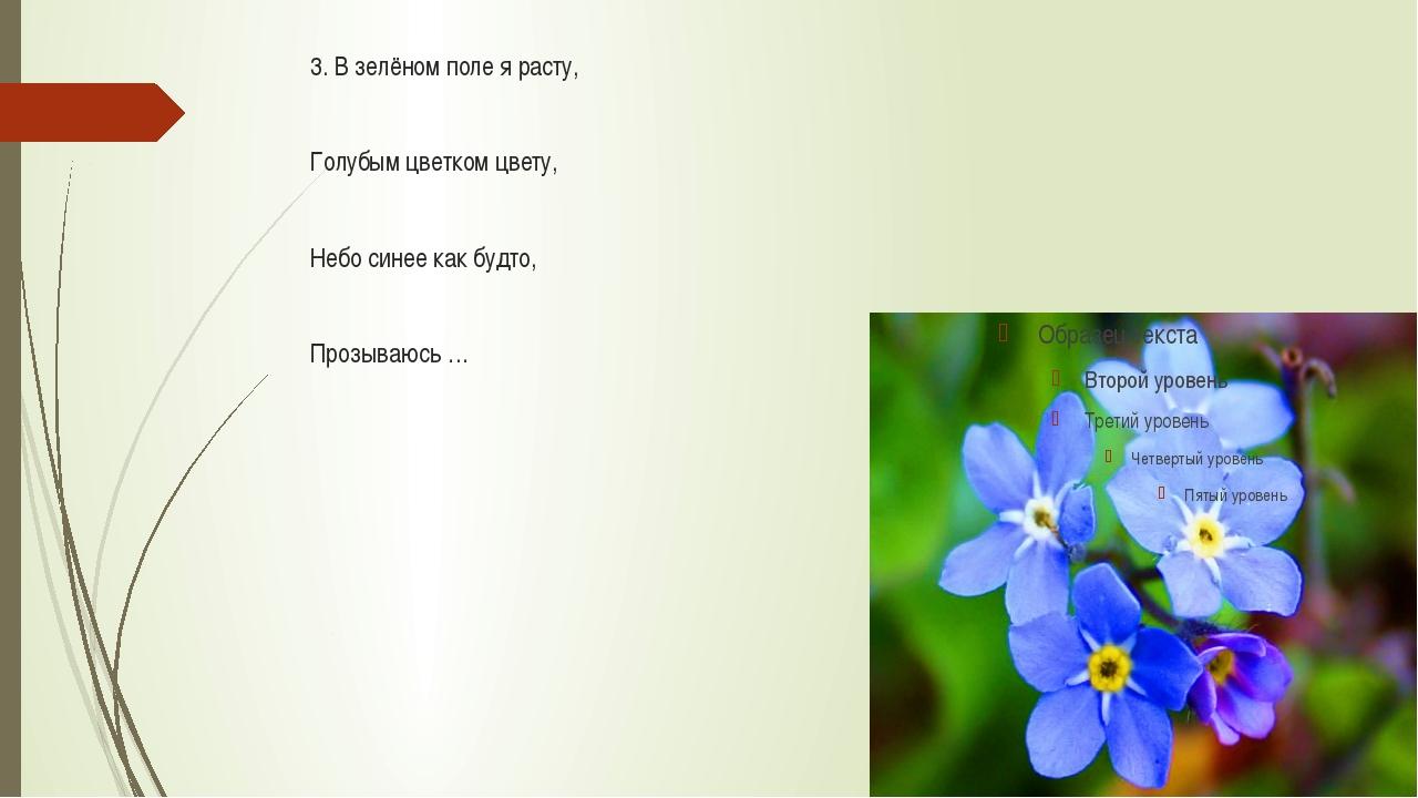3. В зелёном поле я расту, Голубым цветком цвету, Небо синее как будто, Проз...